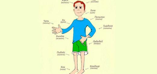 Части тела на коми-пермяцком языке