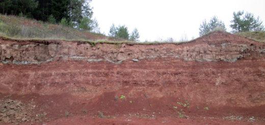 Срез почвы в пермском крае, кудымкар