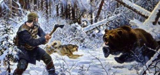 Пера дерется с медведем